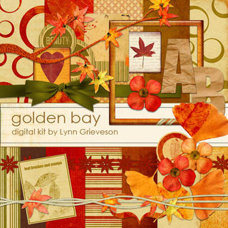 LG_golden-bay-kit-PREV1