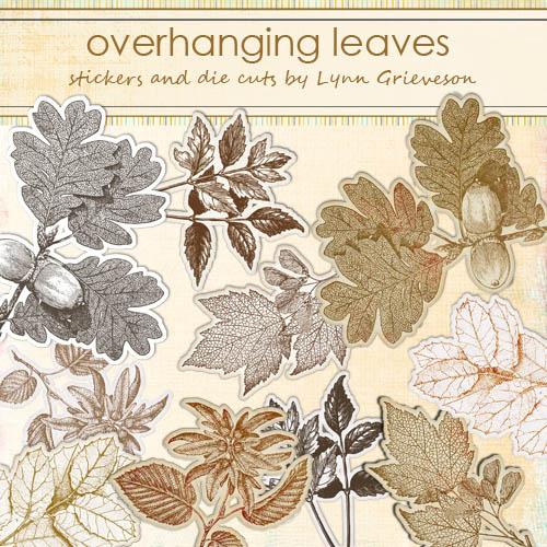 LG_overhanging-leaves-PREV1