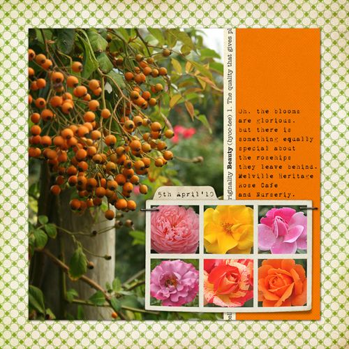 RoseGarden_web