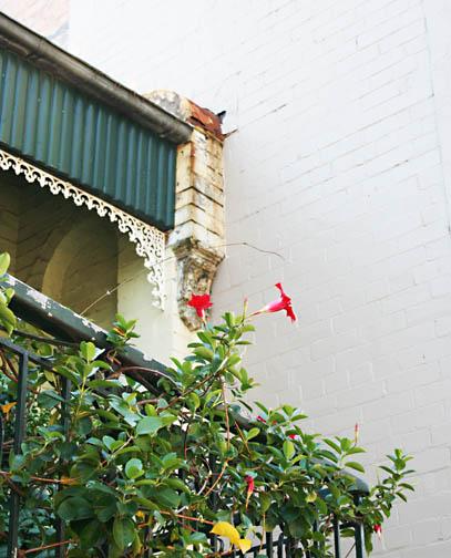 Sydney 071edited