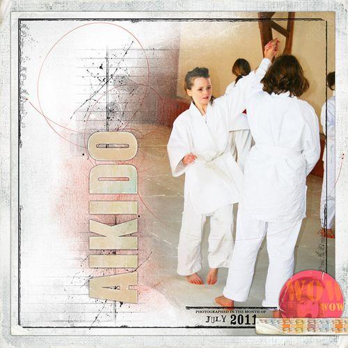 Satscrap-aikido-1