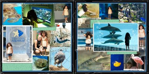 Aquarium3lindase102