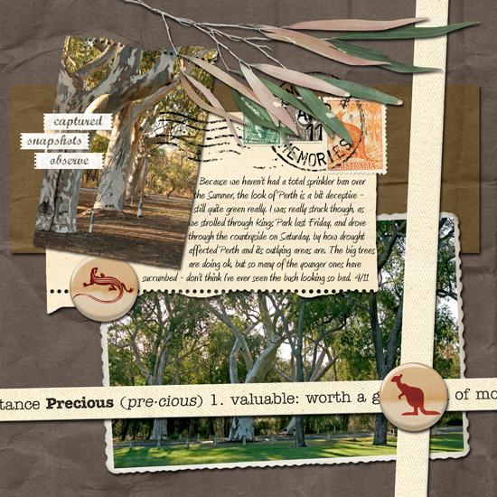 Precious_trees_web