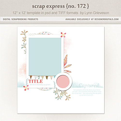 Lynng-scrap-express172-preview