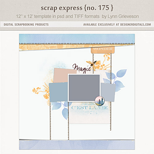 Lynng-scrap-express-175-preview