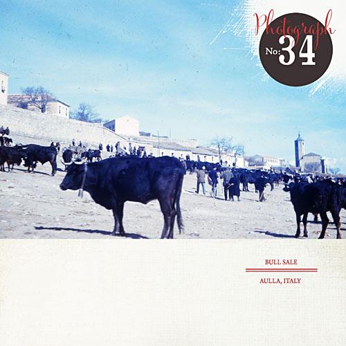 Oe-34 copy