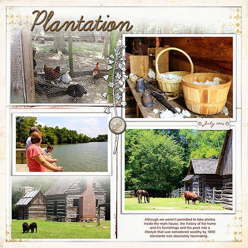 Latta-Plantation-right