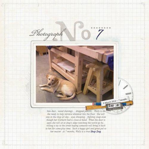 Pups-7
