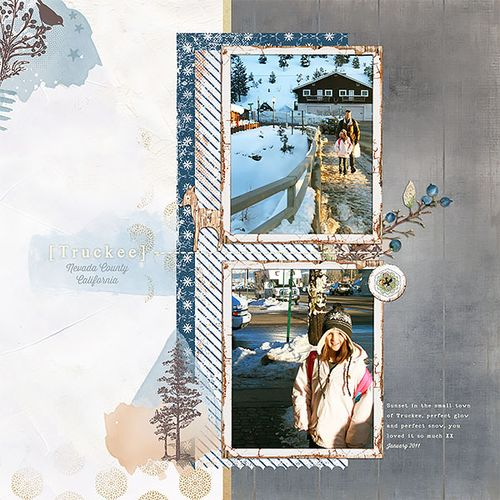 Lgrieveson_bergen-kit-layout3