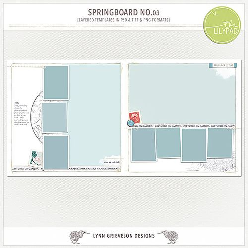 Lgrieveson_springboard-templates-3-preview