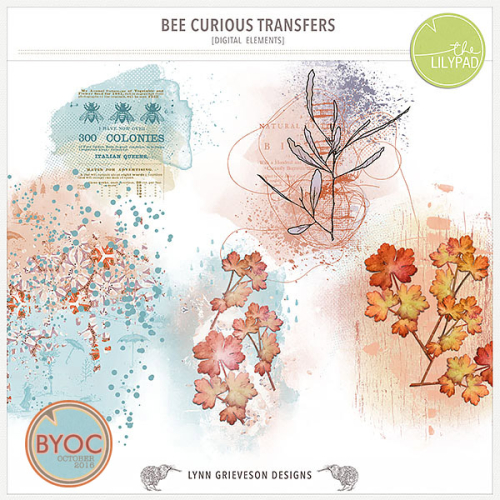 Lgrieveson_bee_curious-transfers_preview