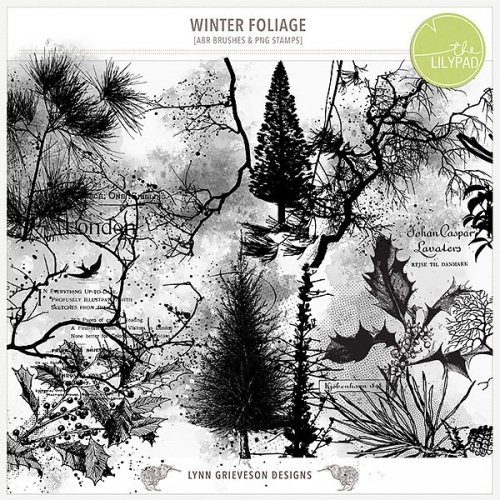 Lgrieveson_winter_foliage_preview