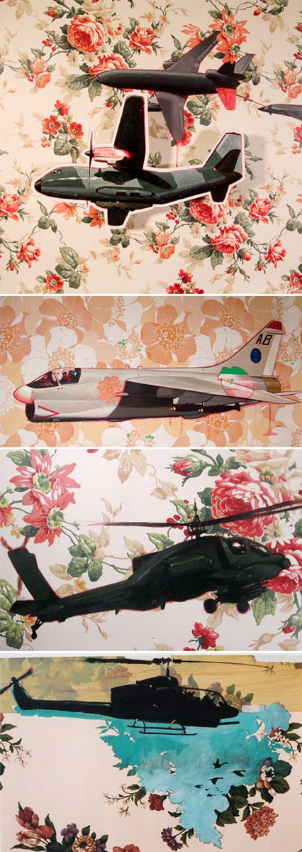 Domestic-v-airplane-insp