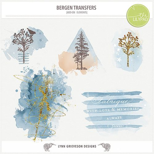 Lgrieveson_bergen_transfers