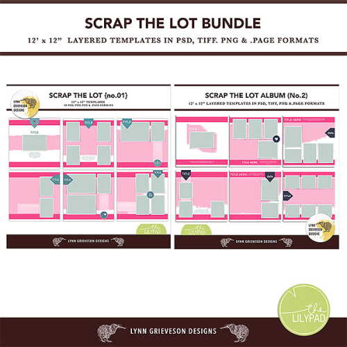 Lgrieveson_scrap_lot_bundle_preview