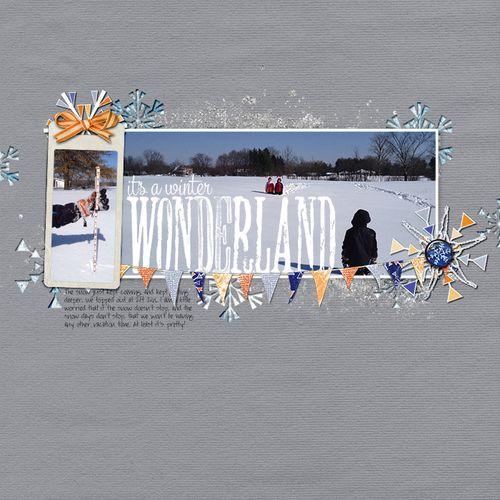 Feb_18_snow_pg_1_webbeckie