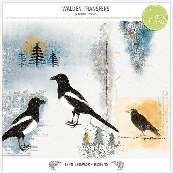 Lgrieveson_walden-transfers