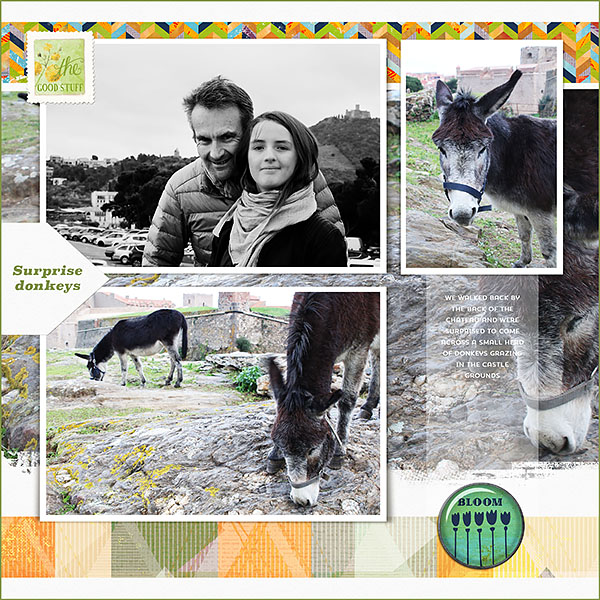 20170710-france_donkey_scrap_lot